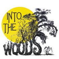 Into the Woods Quiz (Beginner)