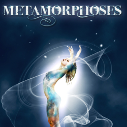 the metamorphosis synopsis