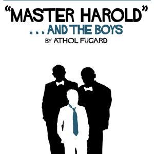 Master harold and the boys essay